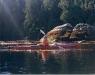 Kayaker 1-600.jpg